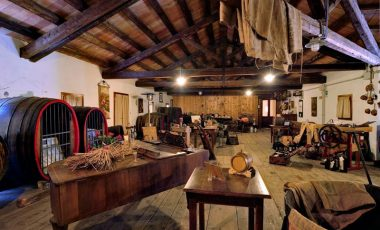 Villa Molon Traverso-1