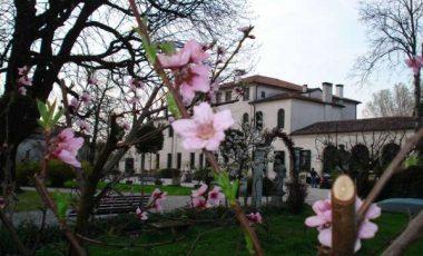 Villa Badoer Fattoretto-5