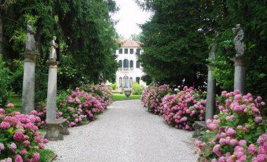 Villa Badoer Fattoretto-6