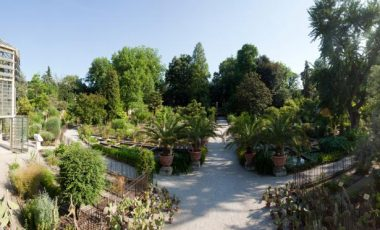 Orto Botanico di Padova-1