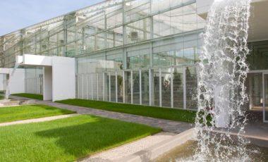 Orto Botanico di Padova-3